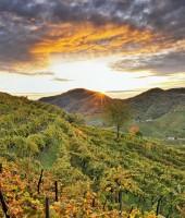 Image of Borgo Molino